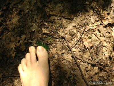 plimbare desculț varicose venele varicoase de la powerlifting
